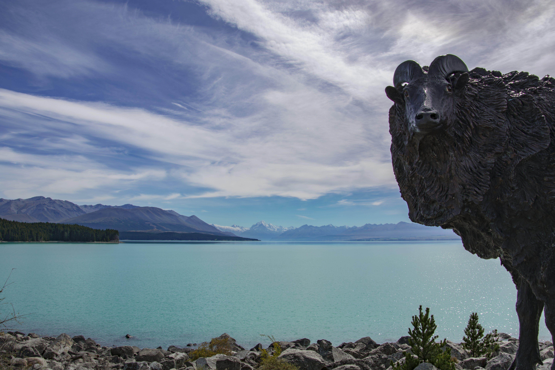 #lake #newzealand #southlsland #statue #glacier