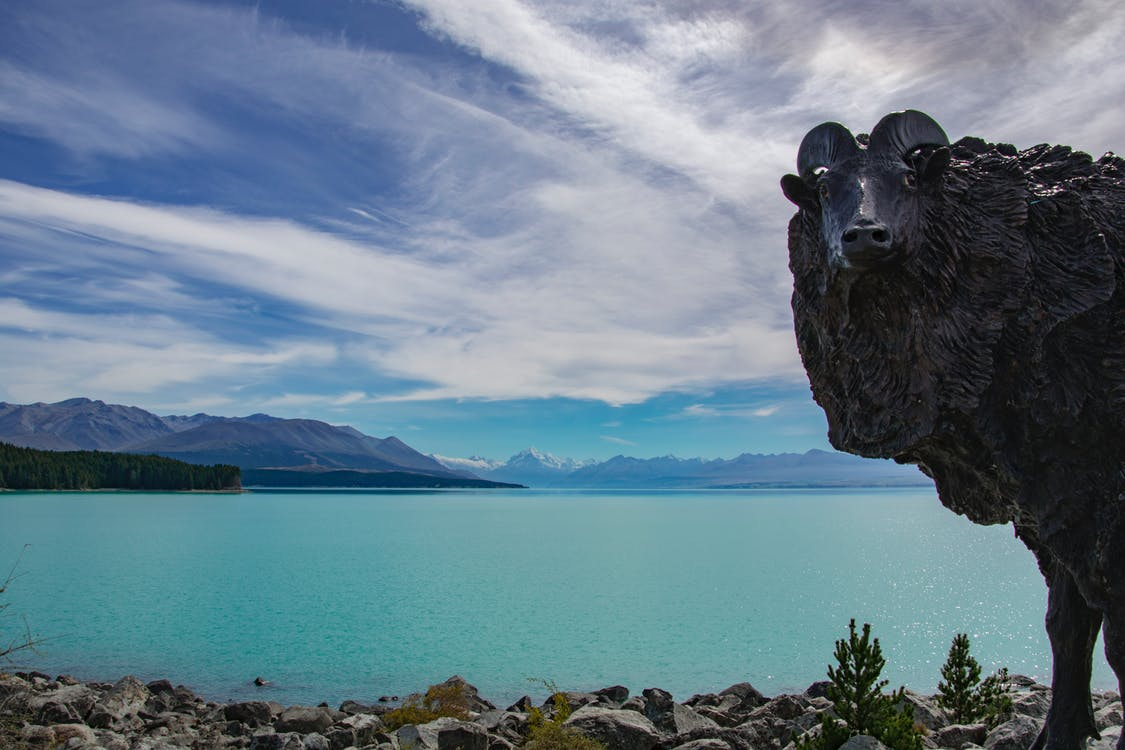#lake #newzealand #southlsland #statue #glacier