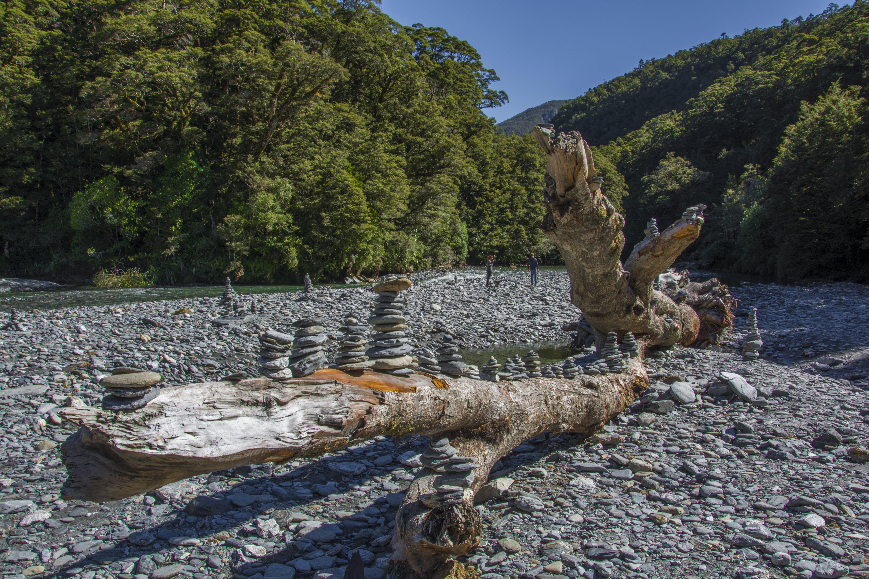 Kostnadsfri bild av #rocks #branch #tree
