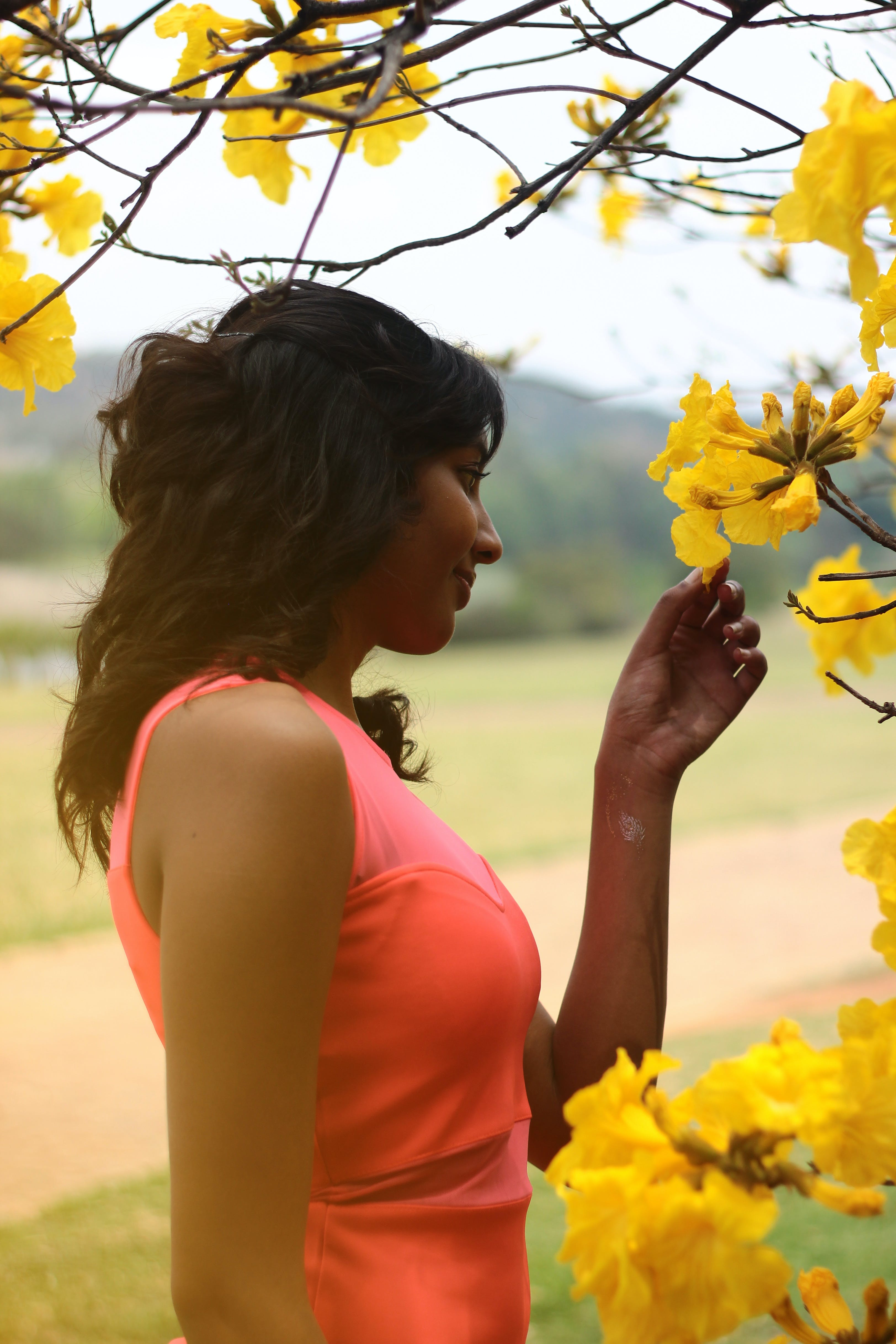 Woman Standing Near Yellow Flowering Tree