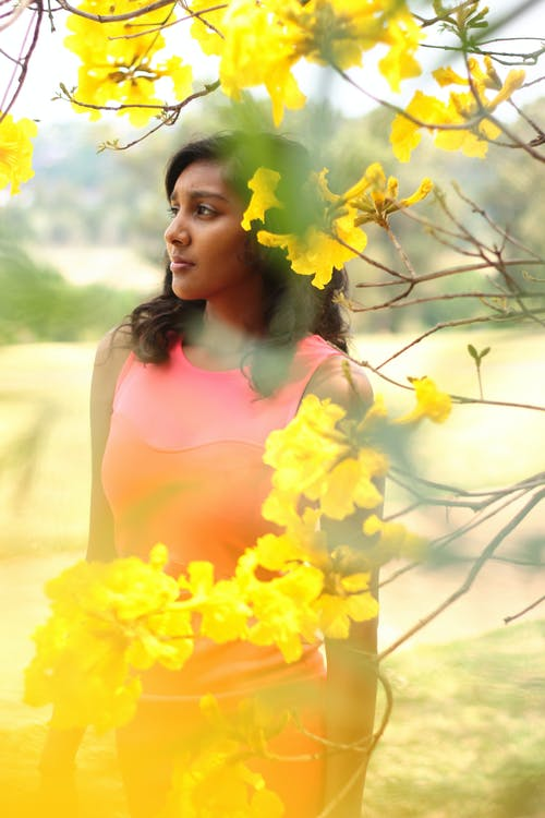 匂い, 美しい花, 花, 黄色の無料の写真素材