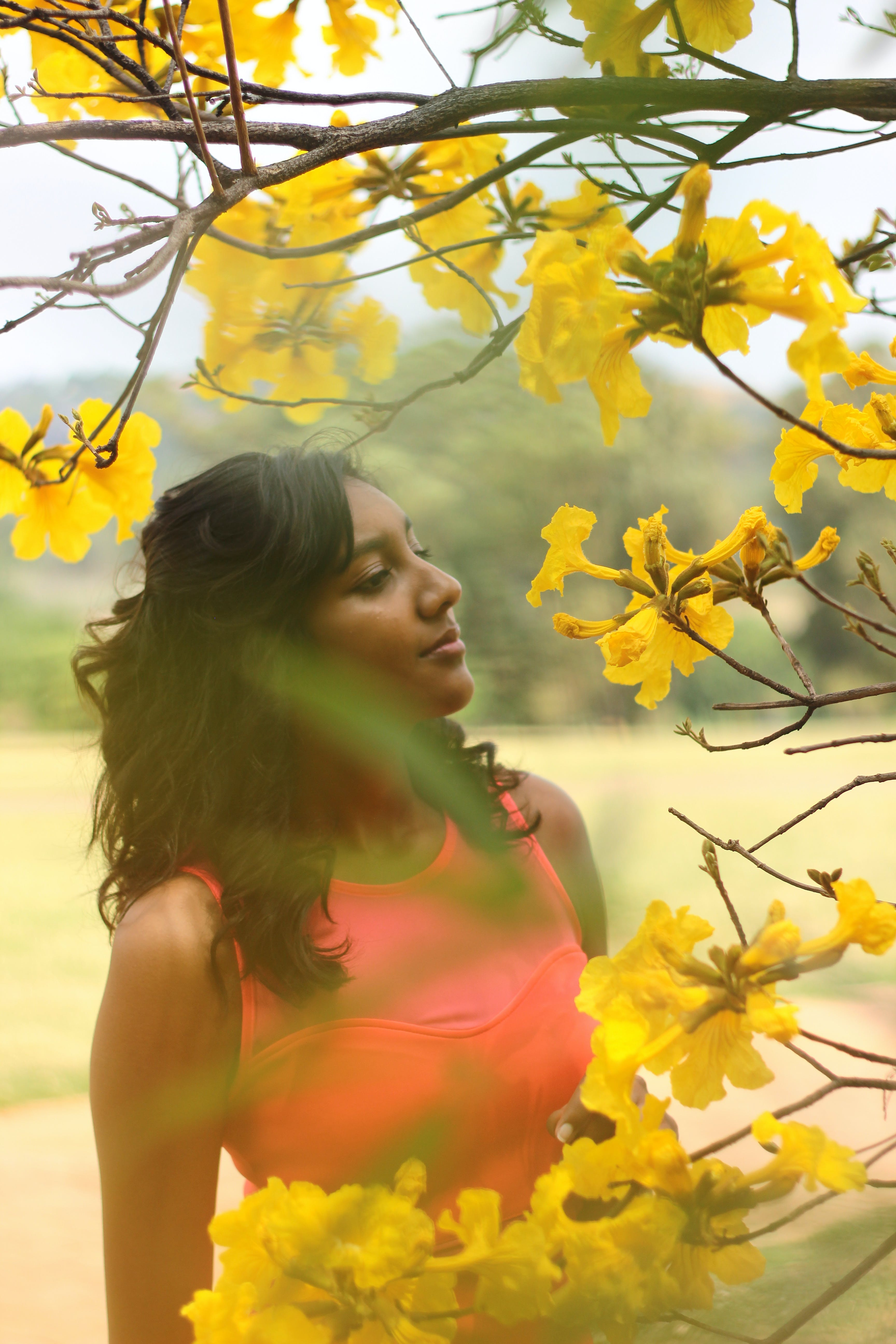 Безкоштовне стокове фото на тему «вродлива, Дівчина, Денне світло, дерево»