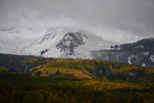 Бесплатное стоковое фото с высокий, горный пик, горы, деревья