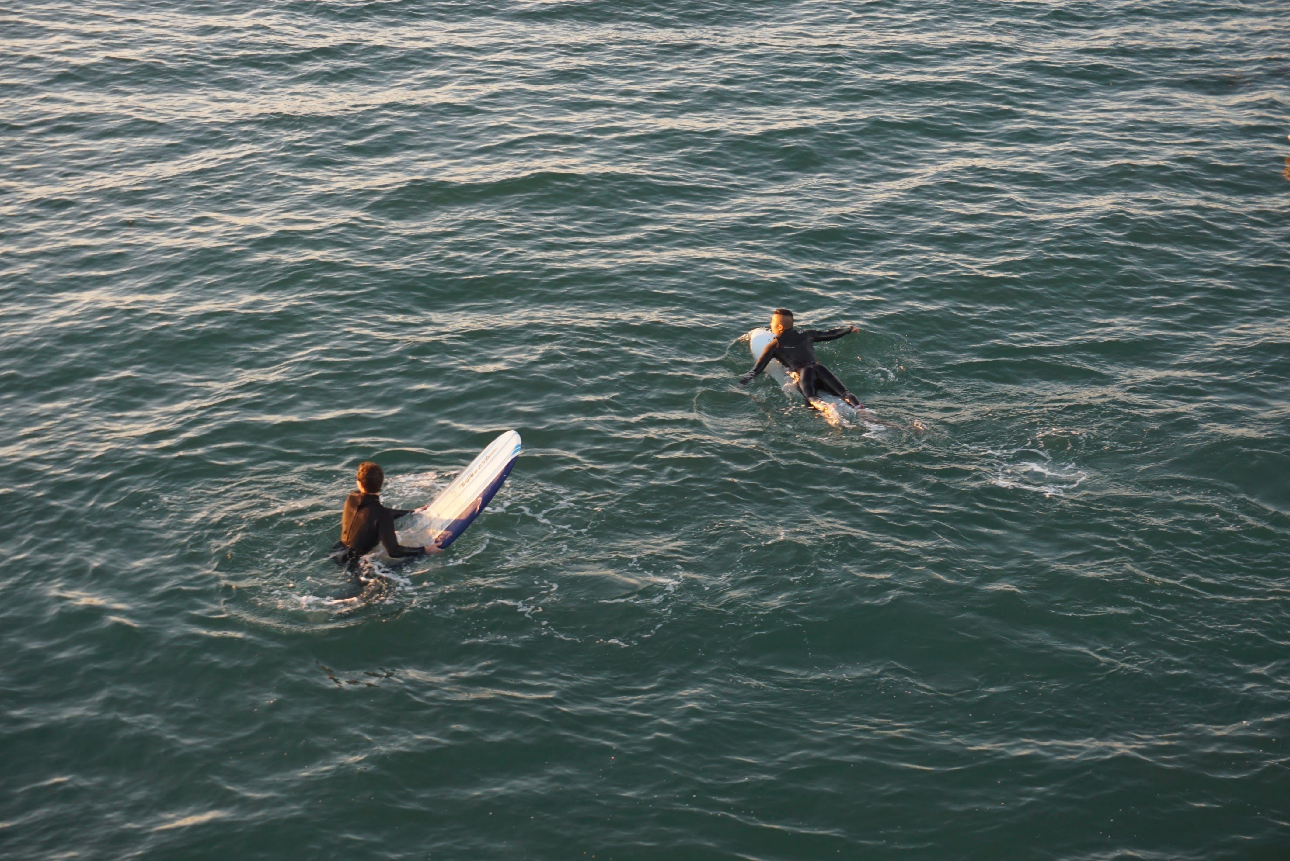 คลังภาพถ่ายฟรี ของ การพักผ่อนหย่อนใจ, ทะเล, ท่อง, นักเล่นเซิร์ฟ