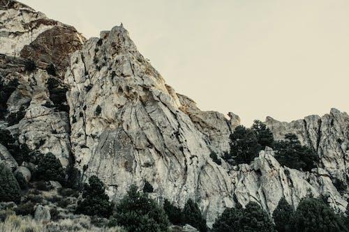 Foto d'estoc gratuïta de arbre, desolador, ennuvolat, formació geològica