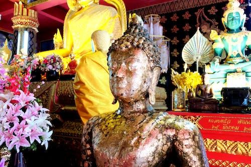 Základová fotografie zdarma na téma buddha, chrám, socha, Thajsko