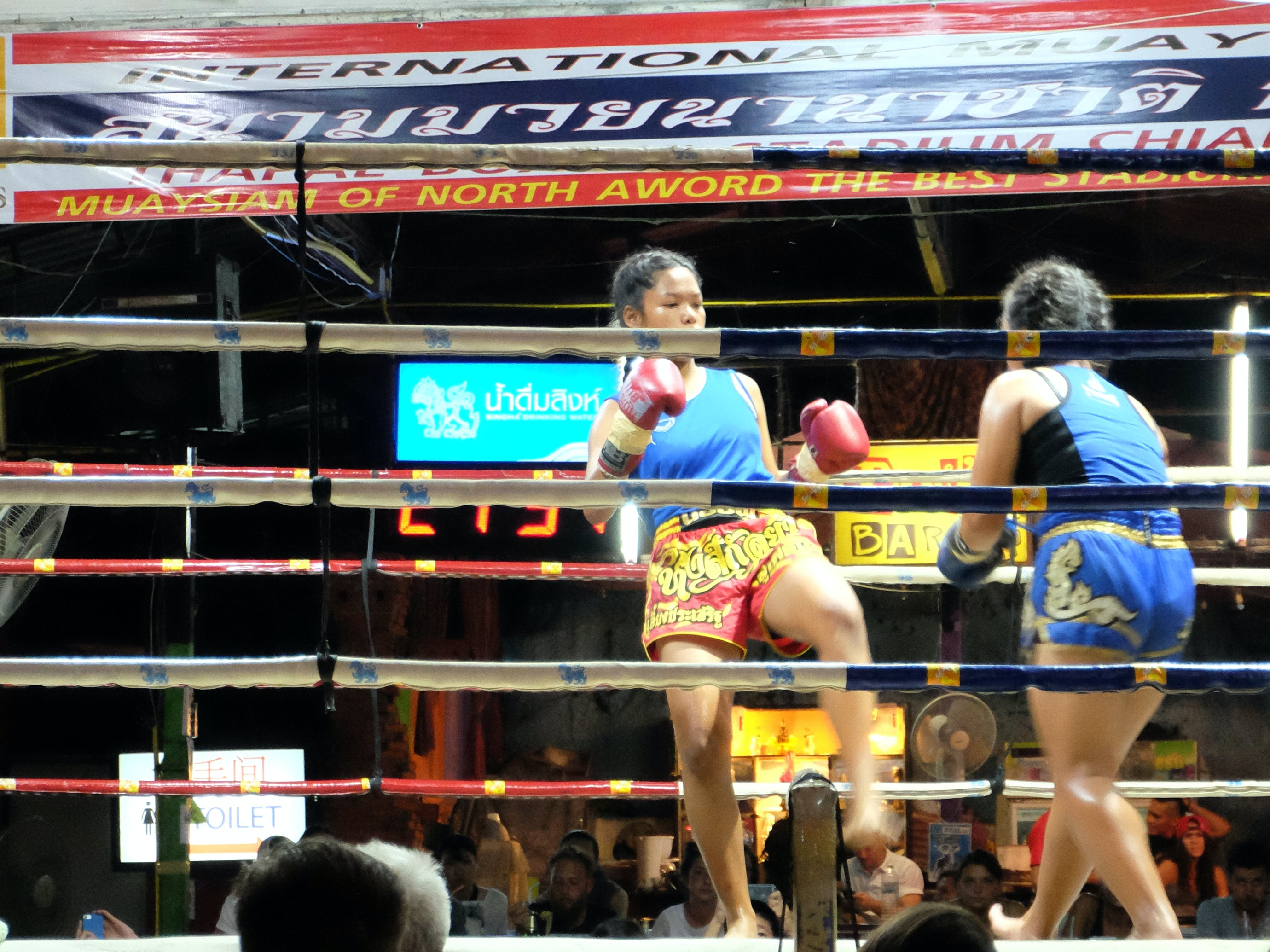 Free stock photo of boxing, fight, fighting, muay thai