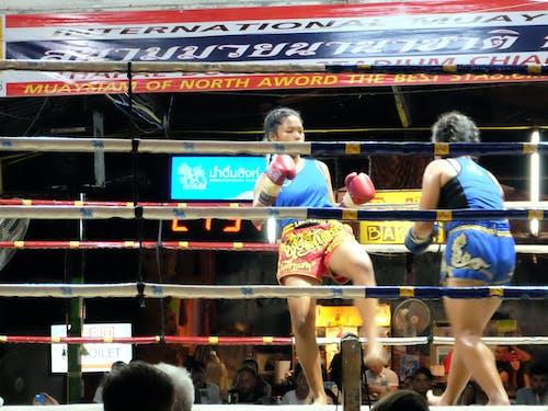 Základová fotografie zdarma na téma boj, boxování, mladé dívky, stadion