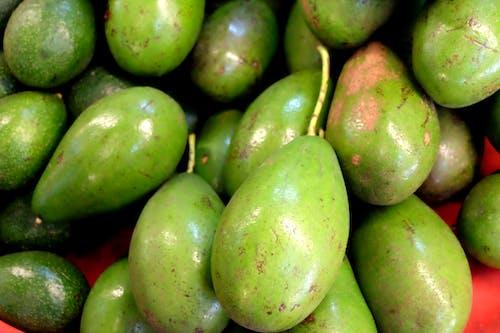 Základová fotografie zdarma na téma avokádo, čerstvý, Thajsko, trh