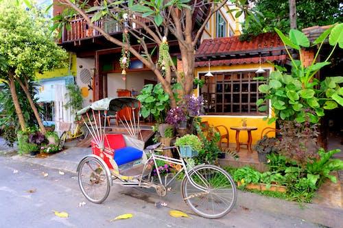 Základová fotografie zdarma na téma Čiang Mai, Thajsko, tuk-tuk, ulice