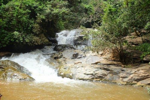 Ilmainen kuvapankkikuva tunnisteilla kivet, luonto, metsä, thaimaa