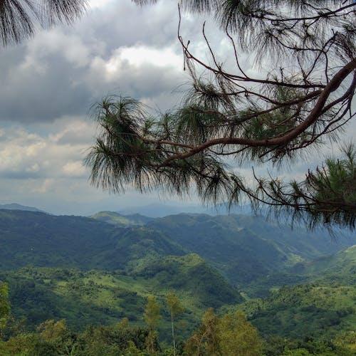 インスタグラム, モバイル写真, 写真撮影, 山の無料の写真素材