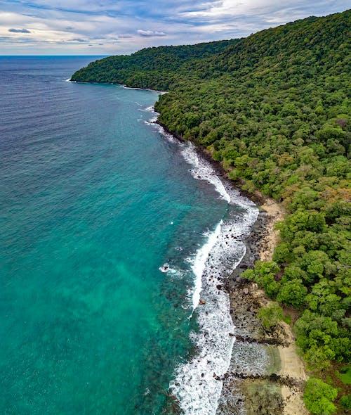 Бесплатное стоковое фото с Аэрофотосъемка, берег, деревья, живописный