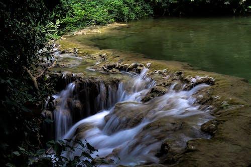 Fotos de stock gratuitas de agua corriendo, bonito, cascada, cascadas