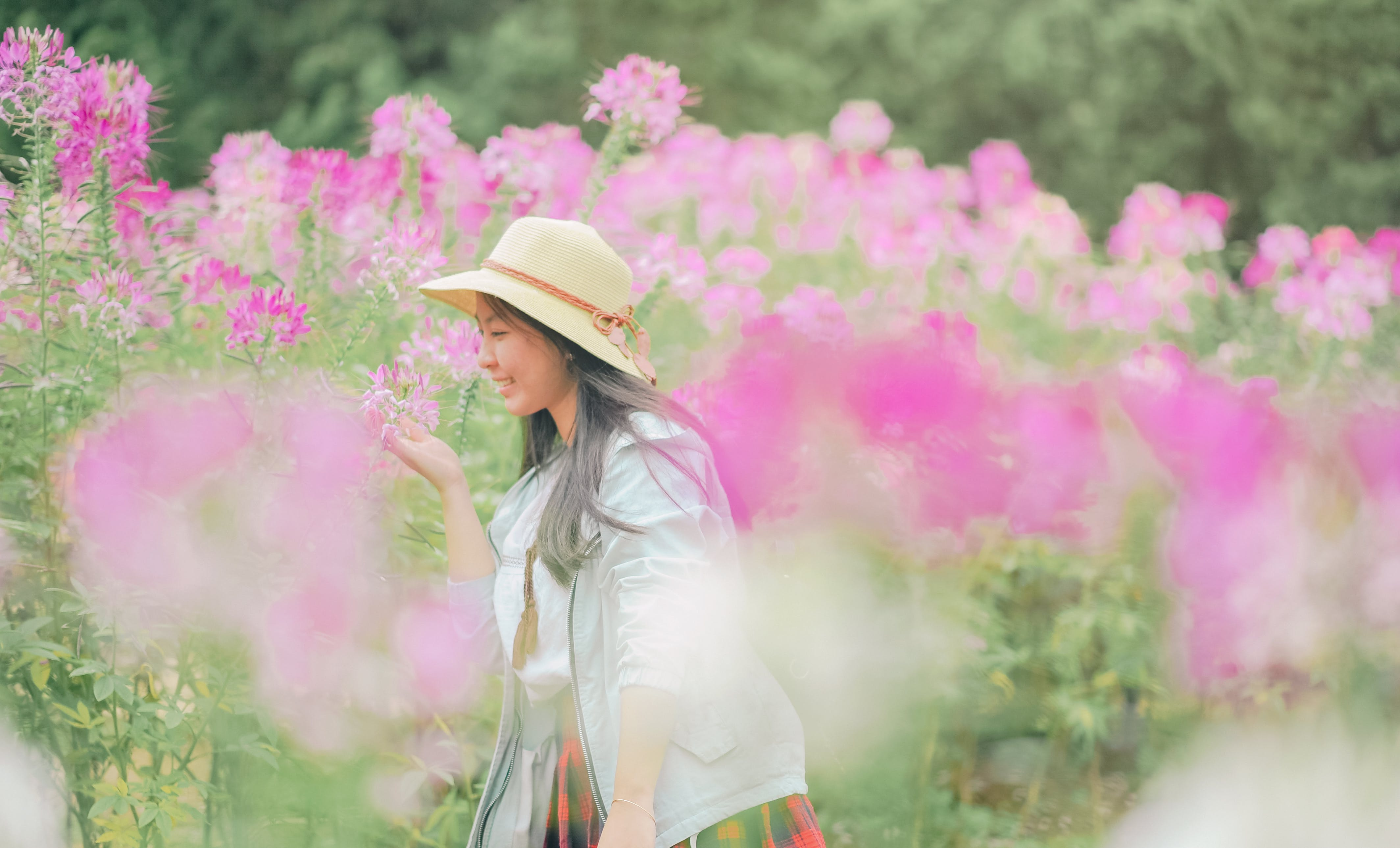 Woman Standing and Smelling Pink Petaled Flower