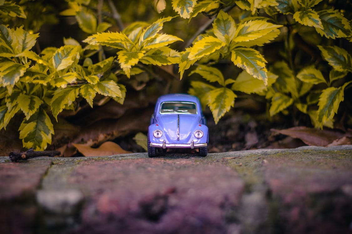 Selective Focus Photography of Purple Volkswagen Beetle Near Green Leaves