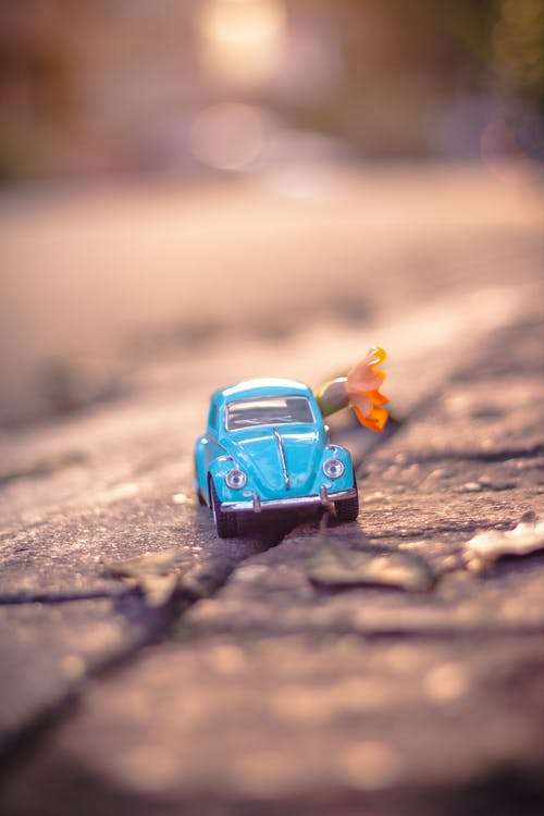 Blue Volkswagen Beetle Coupe in Selective-focus Photography