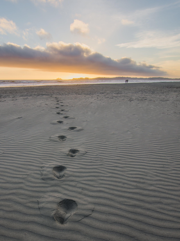 Δωρεάν στοκ φωτογραφιών με ακτή, άμμος, Άνθρωποι, απόγευμα