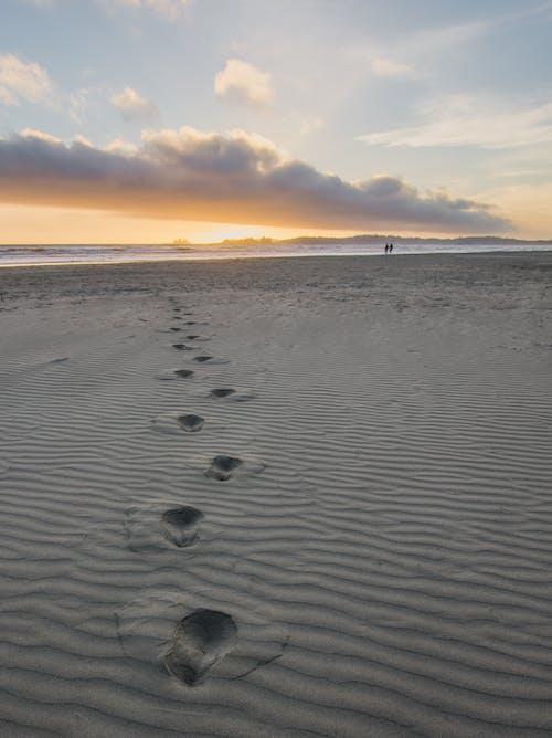 Immagine gratuita di acqua, bagnasciuga, camminando, cielo