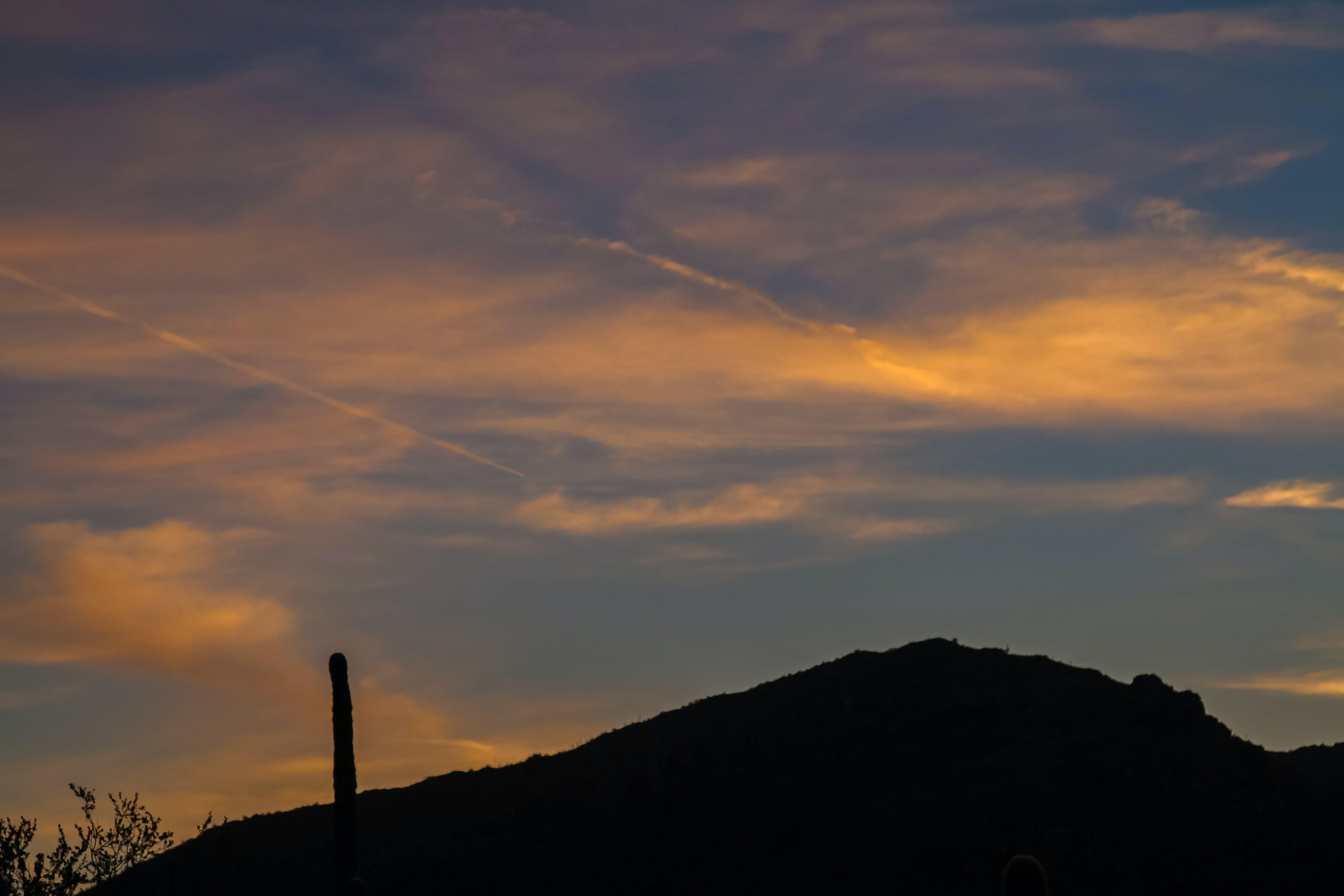 Gratis lagerfoto af bjerg, blå, himmel, kaktus