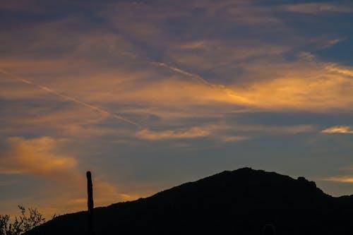 Foto profissional grátis de azul, cacto, céu, deserto