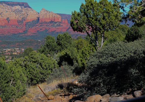Foto profissional grátis de árvores, ecológico, montanha, pedra vermelha