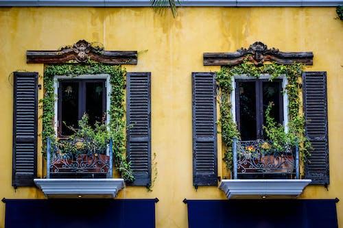 Imagine de stoc gratuită din balcon, centrale, ferestre, galben