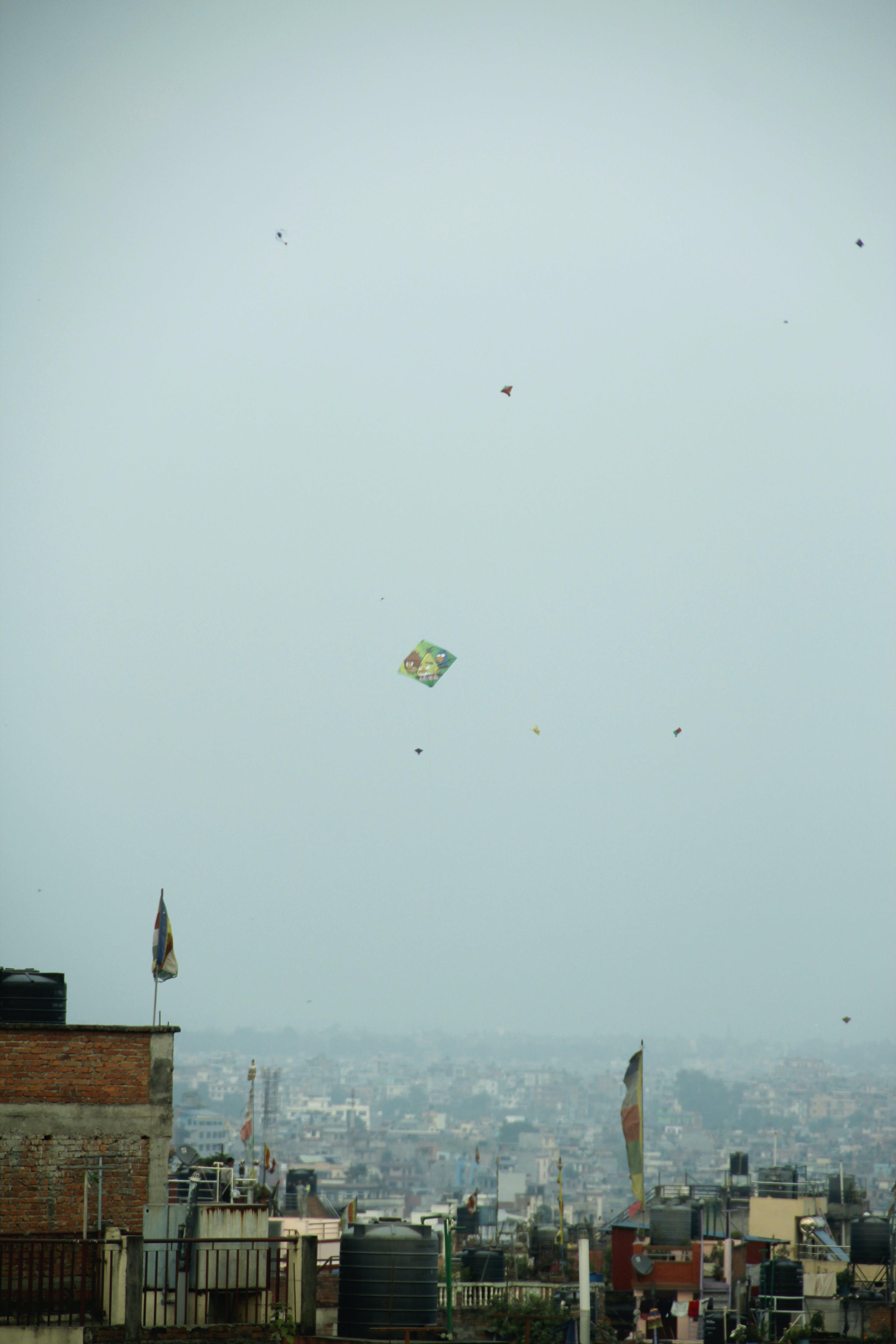 Free stock photo of kite