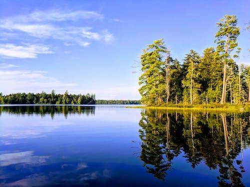 公園, 國家公園, 天性, 戶外 的 免费素材照片