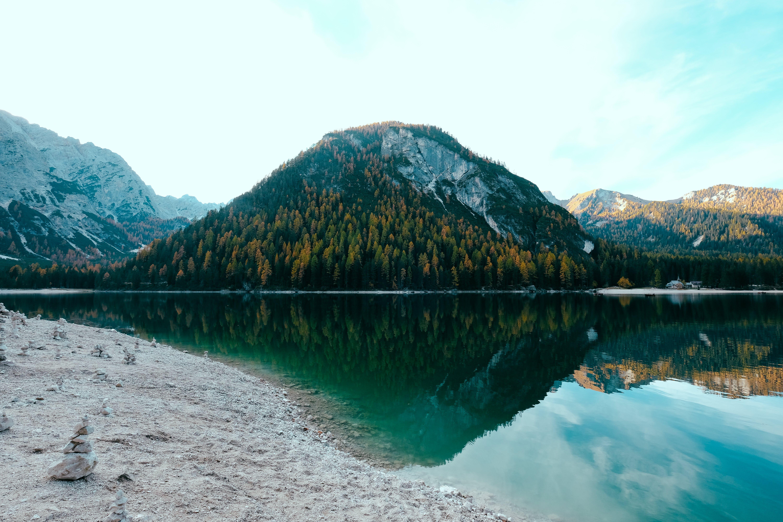 Kostenloses Stock Foto zu abenteuer, bäume, berg, hd wallpaper