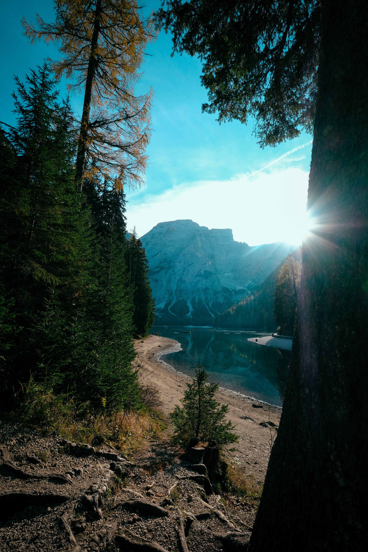 Kostenloses Stock Foto zu bäume, berg, draußen, fluss