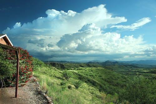 Základová fotografie zdarma na téma denní světlo, dřevo, hora, hřiště