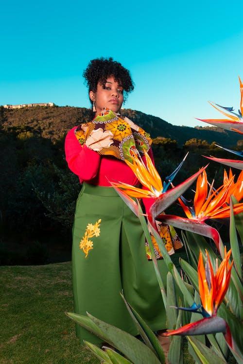 Безкоштовне стокове фото на тему «афро-американська жінка, вираз обличчя, дозвілля, жаб'яча перспектива»
