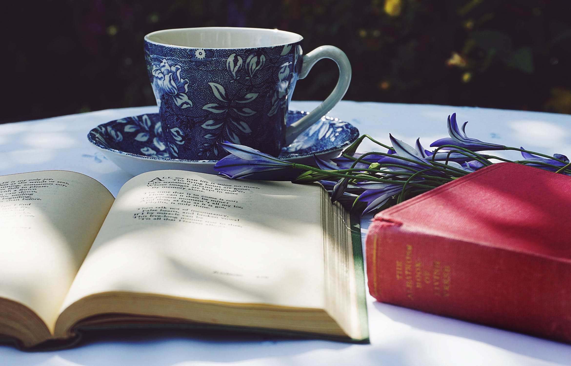 Blue teacup, flowers, and poetry books