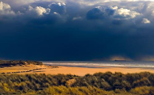 Gratis lagerfoto af bølger, dagslys, græs, himmel
