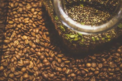 Free stock photo of black coffee, brewed coffee, coffee