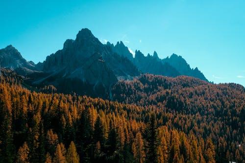 Гора под голубым небом