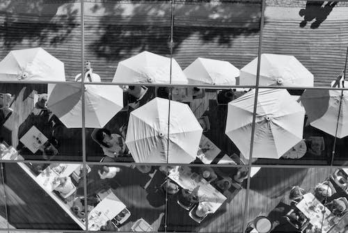 Photos gratuites de miroir, parapluie