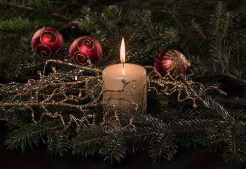 คลังภาพถ่ายฟรี ของ คริสต์มาส, สว่าง, ส่องแสง, เทียน