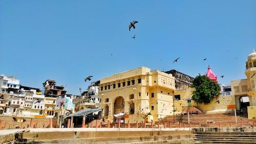 Ảnh lưu trữ miễn phí về Ấn Độ, b, bầu trời, khu vực tôn giáo