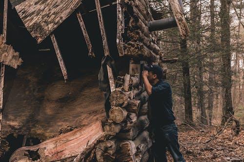 Foto d'estoc gratuïta de abandonat, adult, arbres, arruïnar