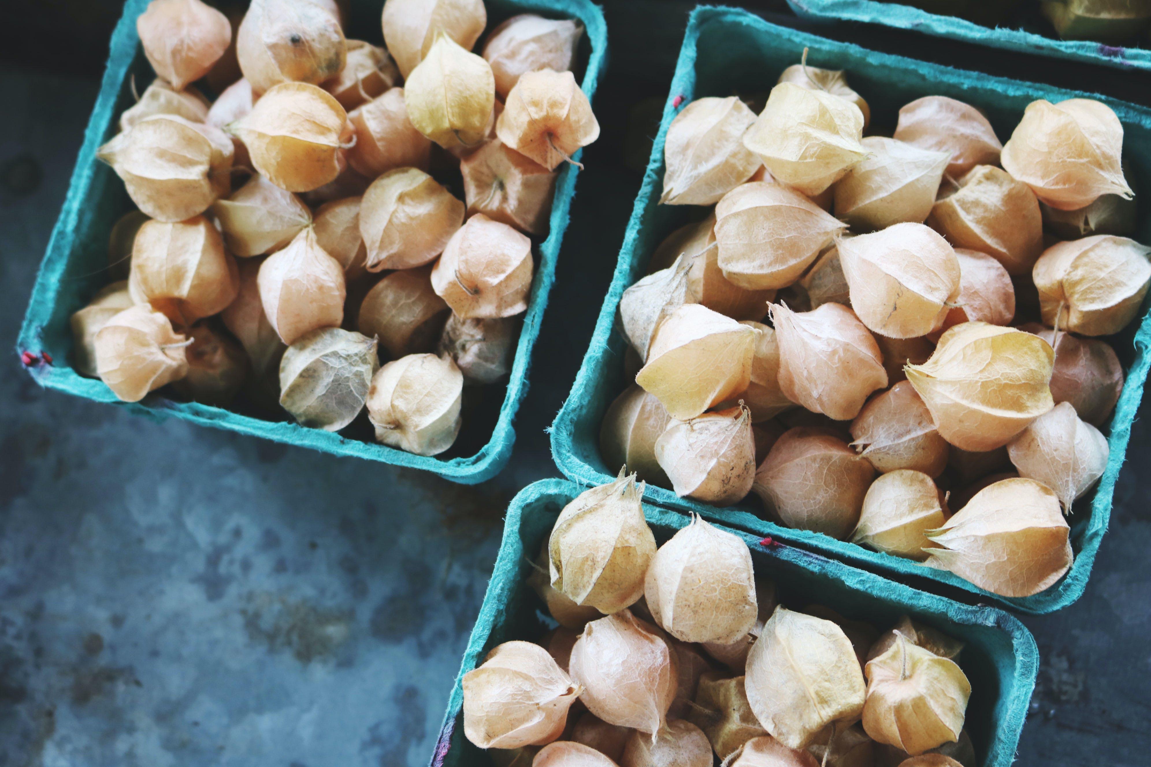 Kostenloses Stock Foto zu erfrischung, ernte, frisch, früchte