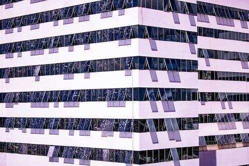 Бесплатное стоковое фото с архитектура, Архитектурное проектирование, здание, окна