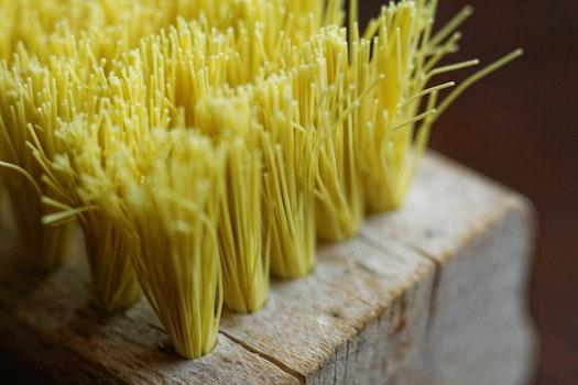 Free stock photo of brush, broom