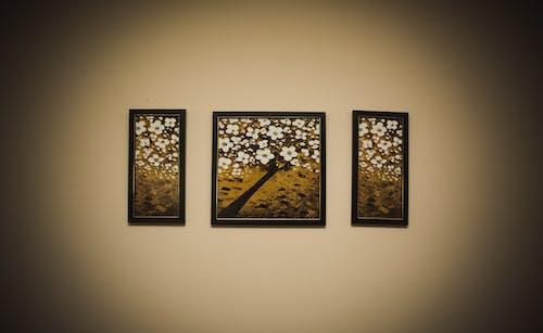 Free stock photo of decor, frames, interior design