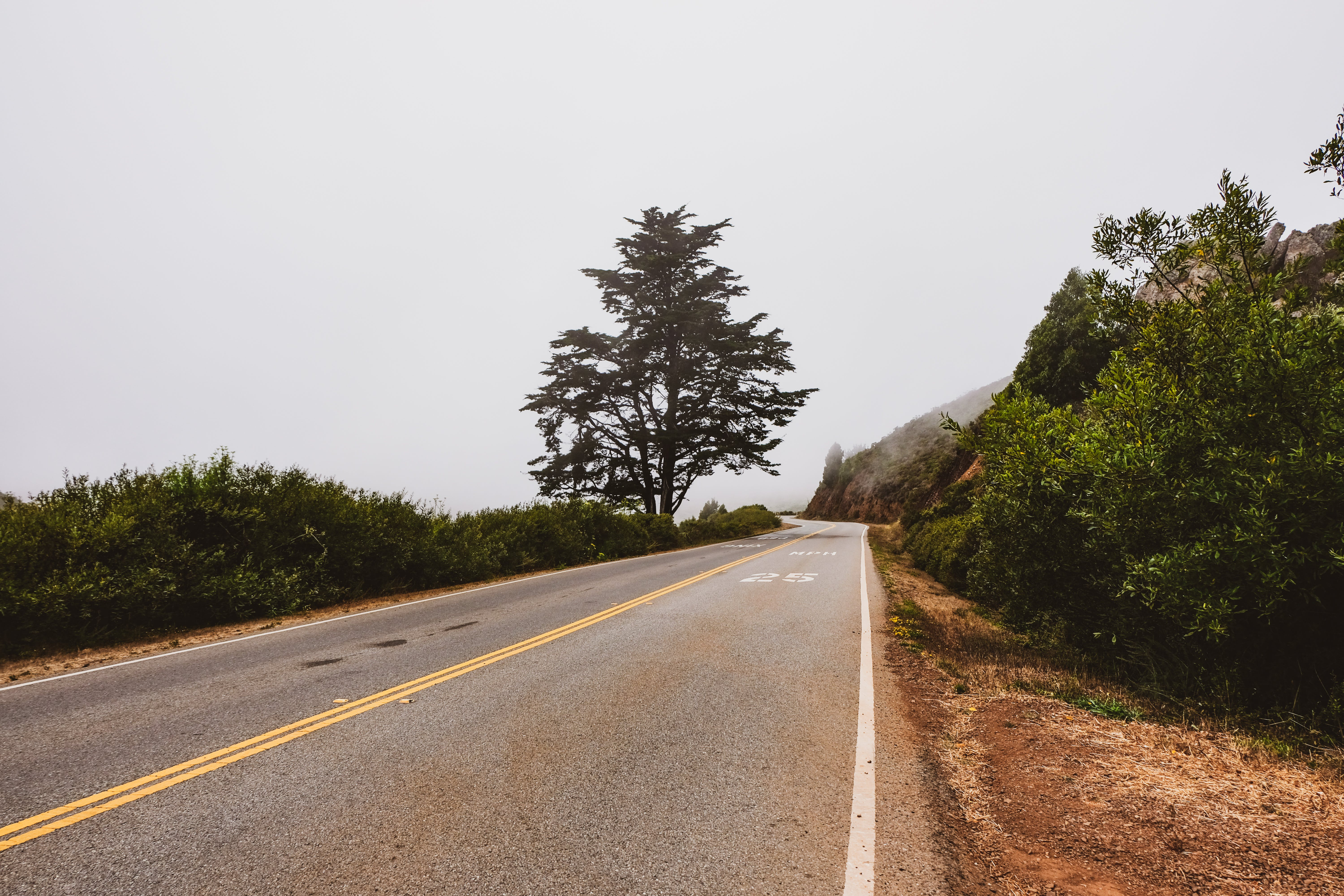 Free stock photo of empty road, fog, foggy, open road