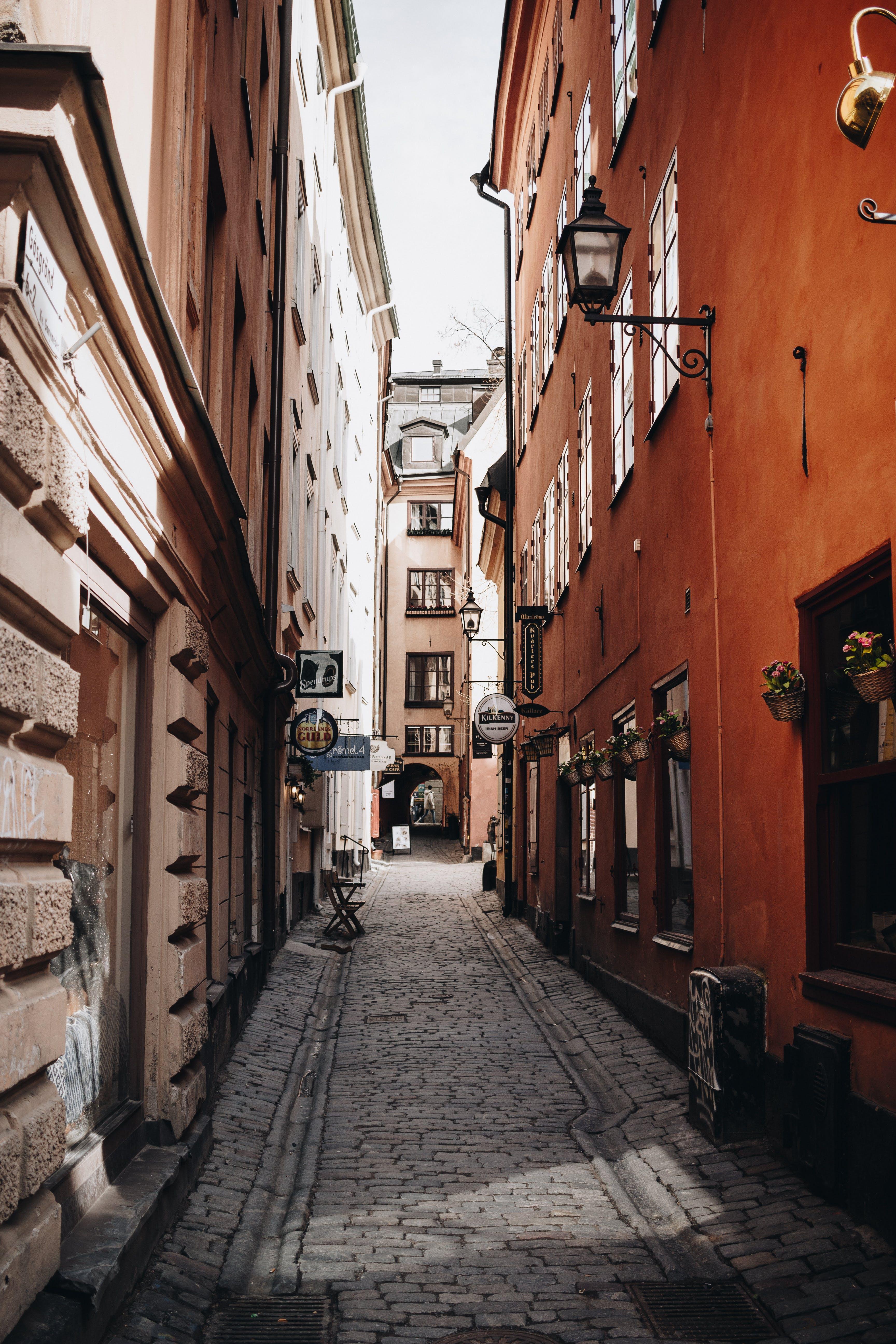 de arquitetura, calçamento, casas, cidade velha