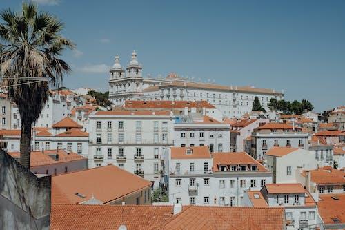 Gratis stockfoto met architectuur, daglicht, daken, gebouwen