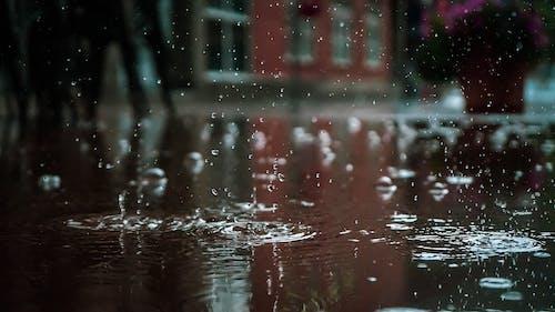 Základová fotografie zdarma na téma barva, cákání, déšť, dešťové kapky