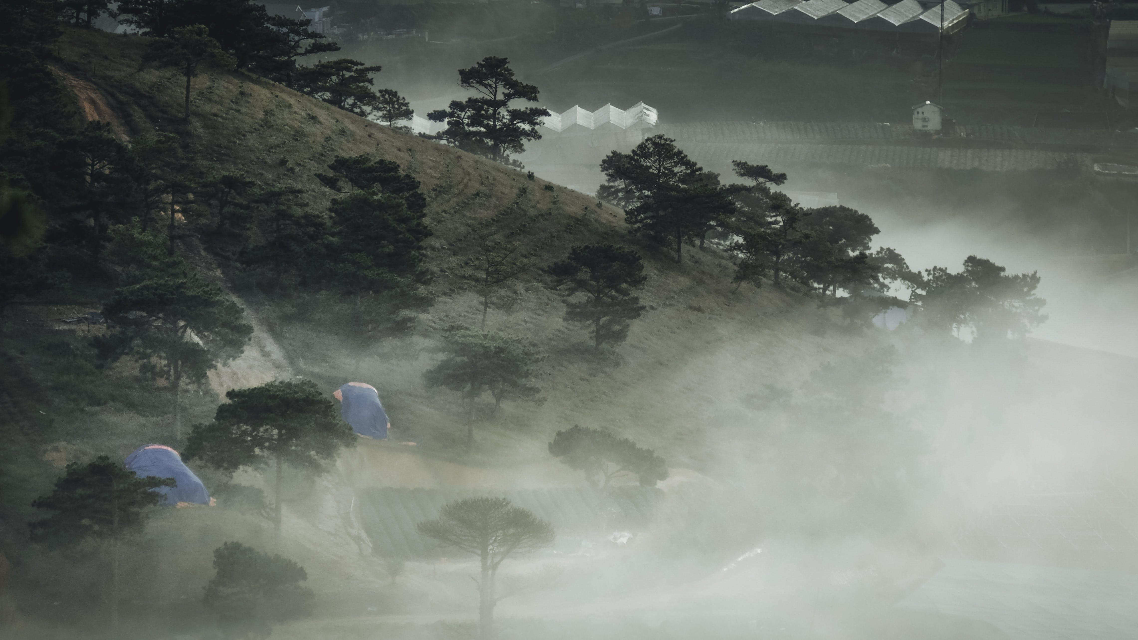 Free stock photo of landscape, hill, fog, foggy